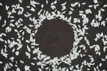 top view of petals forming circle frame over black background