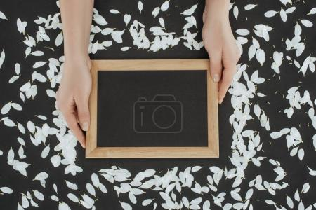 top view of cropped female hands holding frame with petals over black background