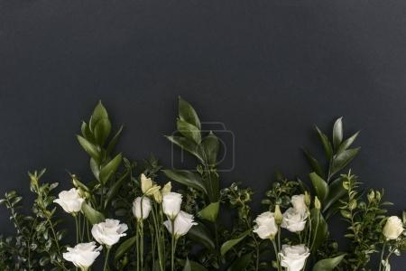 Photo for Top view of eustoma flowers and branches over black background - Royalty Free Image