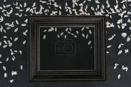 top view of vintage wooden frame with petals over black background