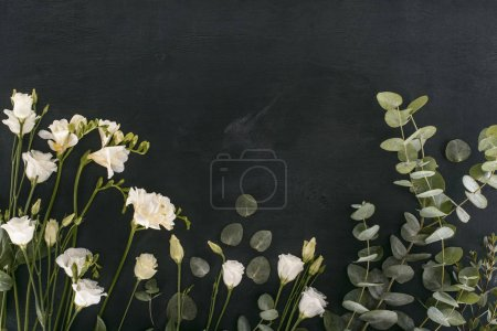 Photo for Top view of eustoma flowers with eucalyptus leaves over black background - Royalty Free Image