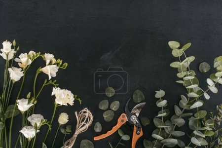 top view of eustoma flowers with eucalyptus leaves and garden shears over black background