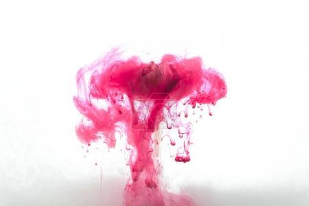 Photo pour Vue rapprochée de fleurs roses et éclaboussures de peinture et tourbillons isolés sur blanc - image libre de droit