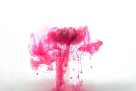 Photo for Close up view of pink flower and ink splashes isolated on white - Royalty Free Image