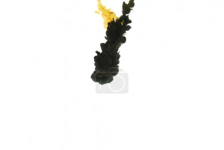 mixing of black and yellow paint splashes, isolated on white with copy space