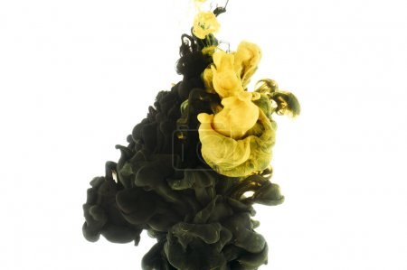 Photo for Mixing of black and yellow paint splashes, isolated on white - Royalty Free Image