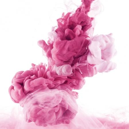 close up view of pink and light pink paint splashes in water, isolated on white