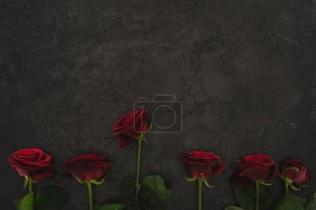 top view of arranged red roses on dark surface
