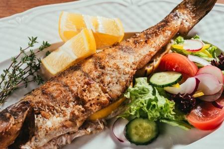 gebackener Fisch mit Zitrone und Kräutern auf weißem Teller mit Salat
