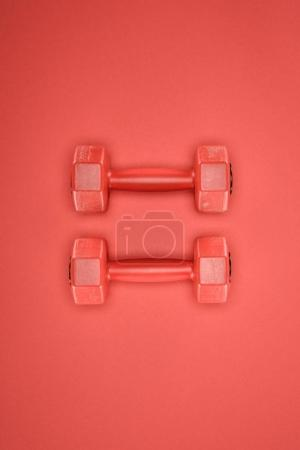 Red shiny dumbbells isolated on red background