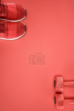 Sports equipment with shoes and dumbbells isolated on red