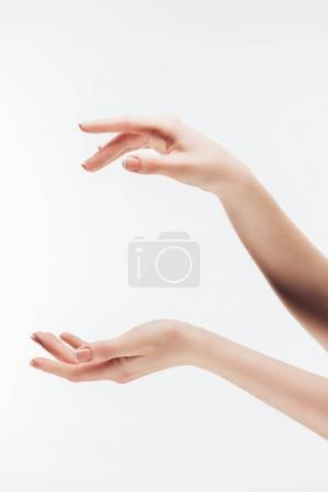 cropped shot of woman pretending holding something in hands with copy space isolated on white
