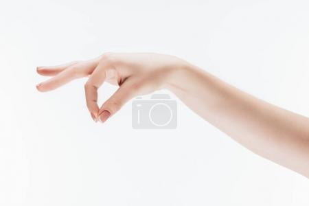 cropped shot of female hand with pinch gesture isolated on white