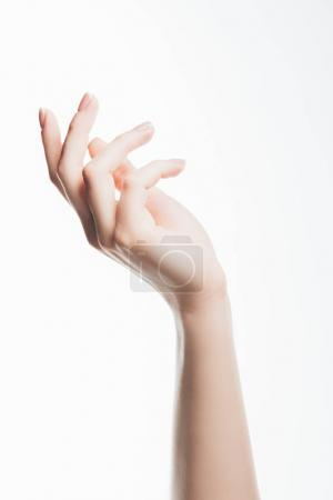 Photo for Cropped shot of female hand with beautiful clear skin isolated on white - Royalty Free Image