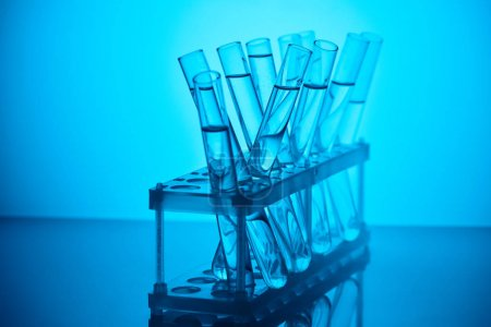 glass tubes with liquid on stand for chemical analysis on blue
