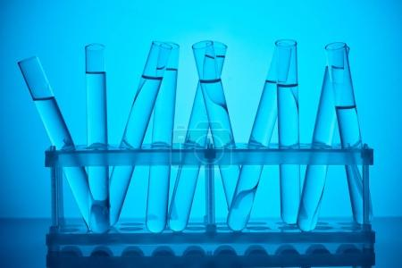 Photo for Glass tubes with liquid on stand for scientific analysis on blue - Royalty Free Image
