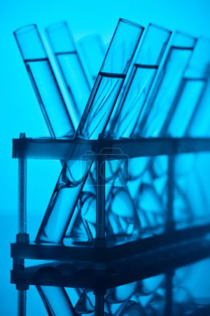 glass tubes with liquid on stand in chemical laboratory on blue