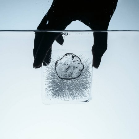 cropped view of person holding ice cube in water, isolated on white