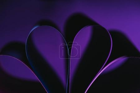 Photo for Warping purple paper in shape of flower - Royalty Free Image
