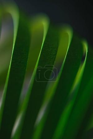 close up view of green quilling striped paper on black