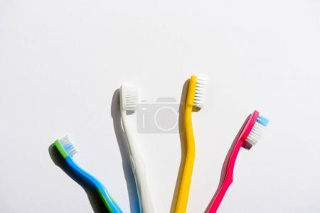 four colorful toothbrushes for morning hygiene, on white
