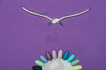 top view of nail nippers and manicure palette isolated on purple