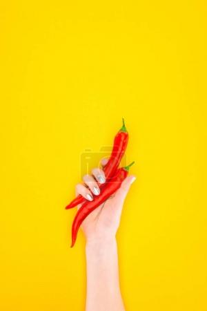 cropped shot of person holding raw red chilli peppers in hand isolated on yellow