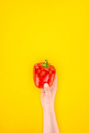 cropped shot of person holding fresh raw paprika pepper isolated on yellow