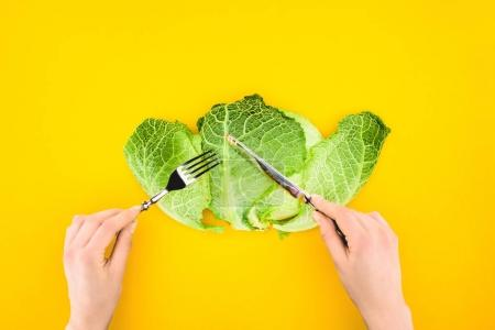 Photo for Cropped shot of person eating healthy savoy cabbage isolated on yellow - Royalty Free Image
