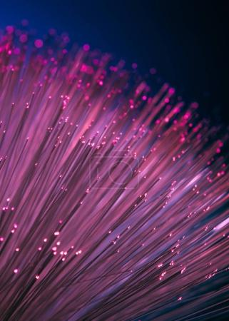 Photo for Close up of shiny pink fiber optics texture background - Royalty Free Image