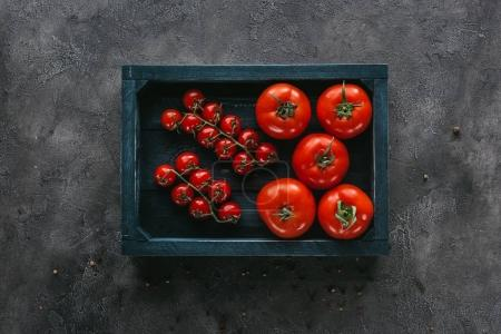 top view of various tomatoes in box on concrete surface