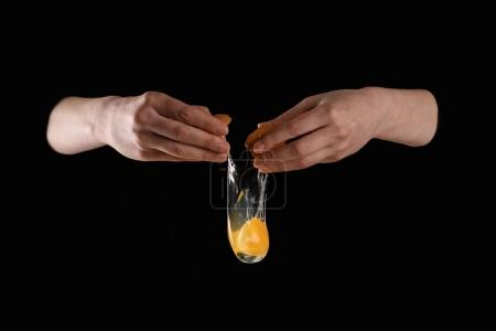 cropped image of woman dropping chicken egg isolated on black