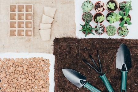 top view of green potted plants, empty pots, soil, stones and gardening tools on grey