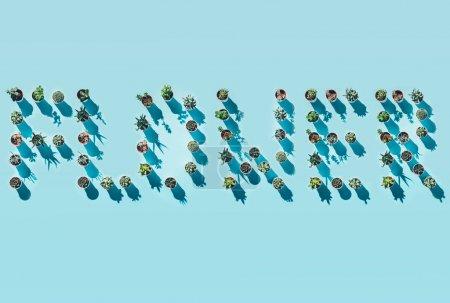 Foto de Vista superior de la palabra flor hecha de plantas en maceta verde en azul - Imagen libre de derechos
