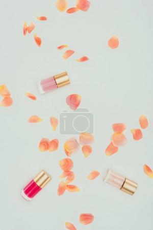 Photo pour Superbes pétales de rose tendres et vernis à ongles sur fond gris - image libre de droit