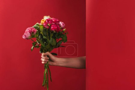 cropped shot of person holding beautiful bouquet of roses on red