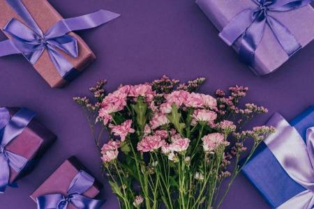 beautiful blooming chrysanthemum flowers and gift boxes on violet