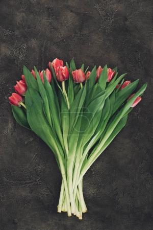 top view of beautiful red tulip flowers on dark surface