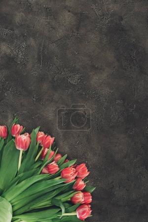 top view of beautiful red tulip flowers on dark surface with copy space