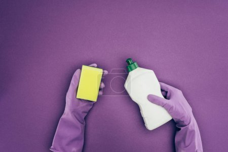 cropped image of woman holding washing sponge and cleaning fluid isolated on violet