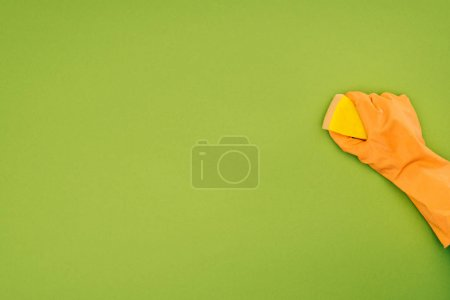 Photo for Cropped image of woman cleaning with washing sponge isolated on green - Royalty Free Image