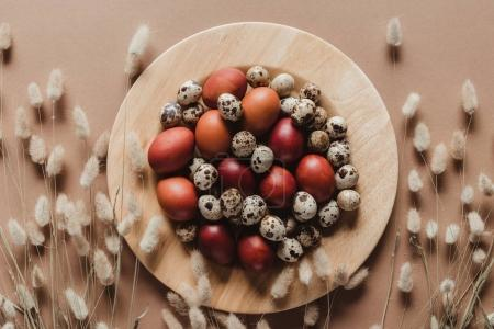 top view of chicken and quail easter eggs on wooden plate with floral ears
