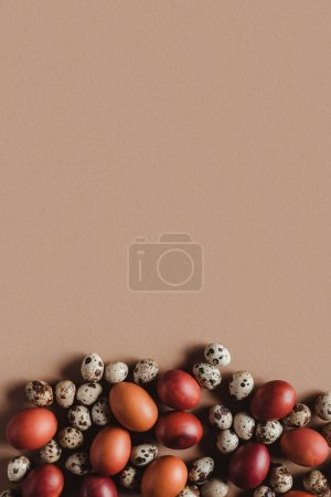 top view of chicken and quail easter eggs on beige background with copy space