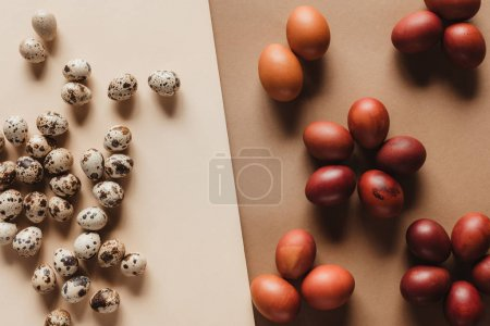 top view of quail eggs and painted easter eggs