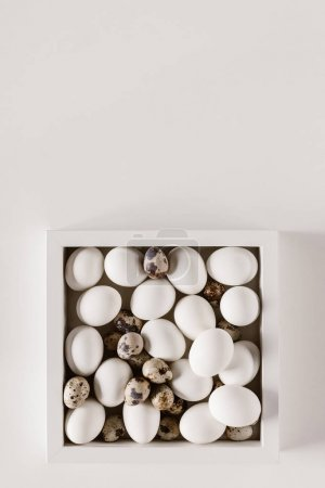 top view of chicken and quail eggs in box on white