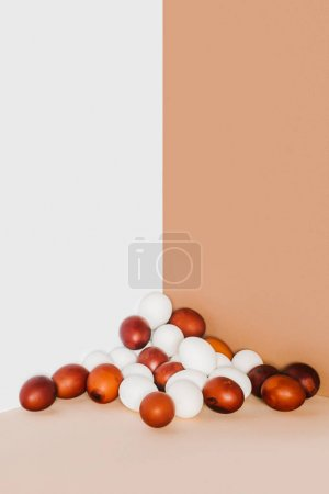 painted and white chicken eggs on minimalistic background