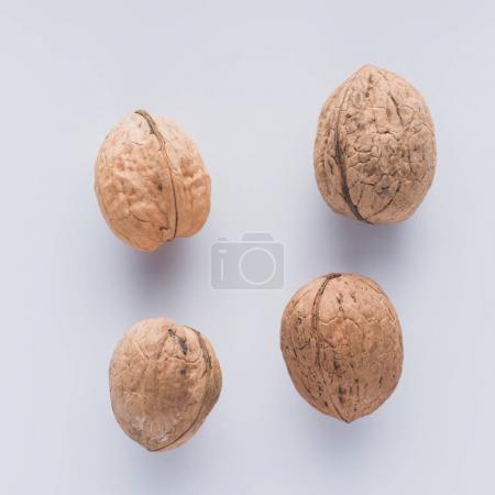 Photo pour Vue de dessus des noix sur la surface blanche - image libre de droit