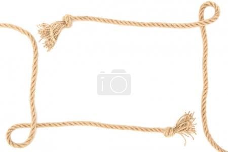 top view of arranged nautical ropes with knots isolated on white