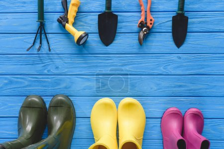 Photo for Top view of arranged gardening tools and colorful rubber boots on blue wooden planks - Royalty Free Image