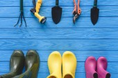 top view of arranged gardening tools and colorful rubber boots on blue wooden planks